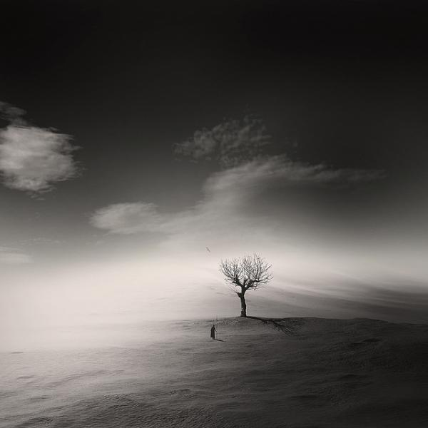 Solitude by George Christakis