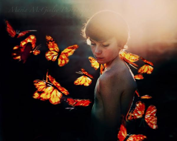 Butterfly Garland photo by Maria McGinley