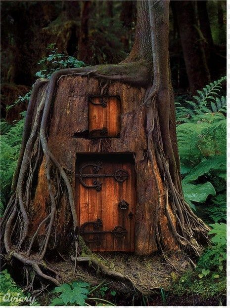 Tree House in Humboldt County, CA