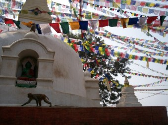 The dome of a stupa with Tibetan prayer flags