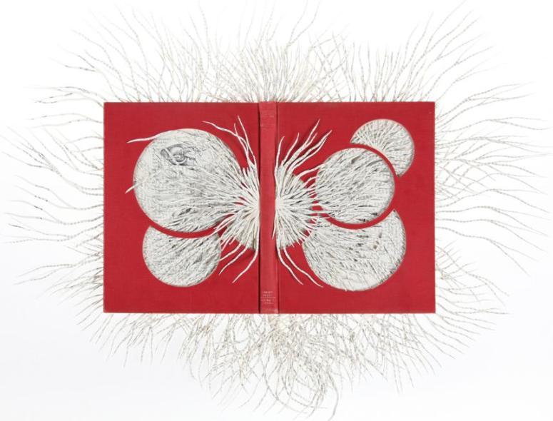 Ariadne's Thread (2013) Barbara Wildenboer, Altered Book
