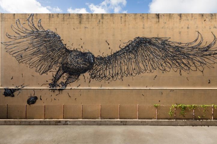 Abscission - Honolulu, Hawaii artist, DAL