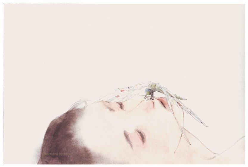 Xiao he (Lotus) by iiiislee