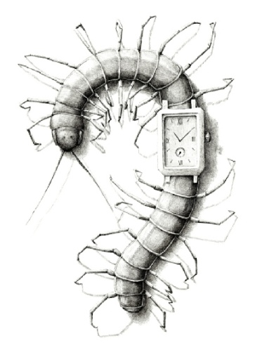 Centipede Watch