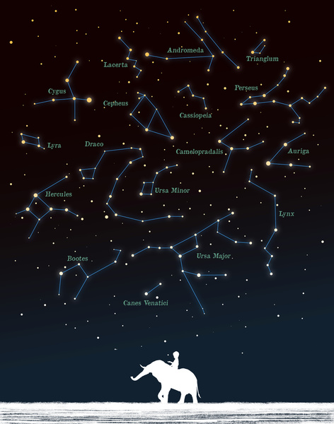 Falling Star by Budi Satria Kwan