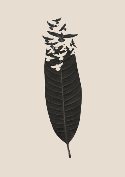 Leave Leaf Left by Budi Satria Kwan