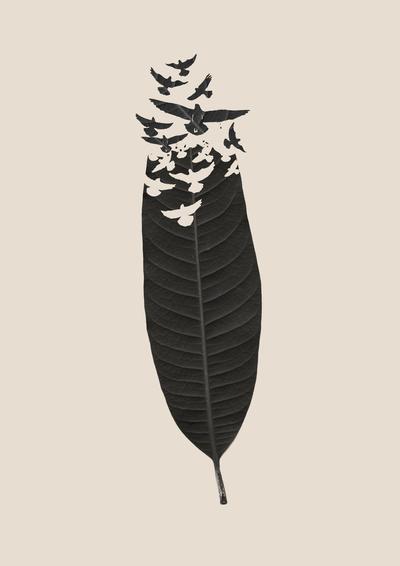 Leave Leaf Left by Budi Satria Kwan