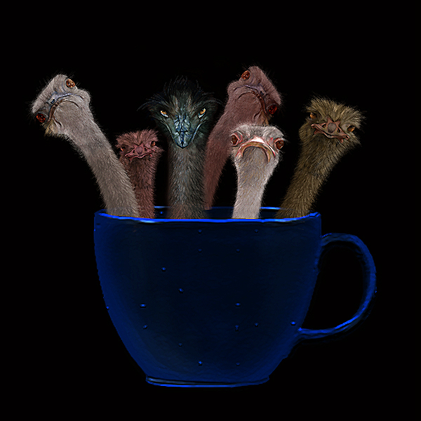 Cup of Ostriches