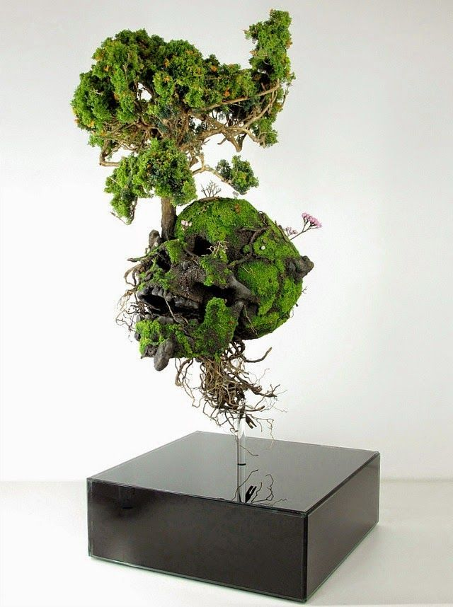 Skull by Emeric Chantier