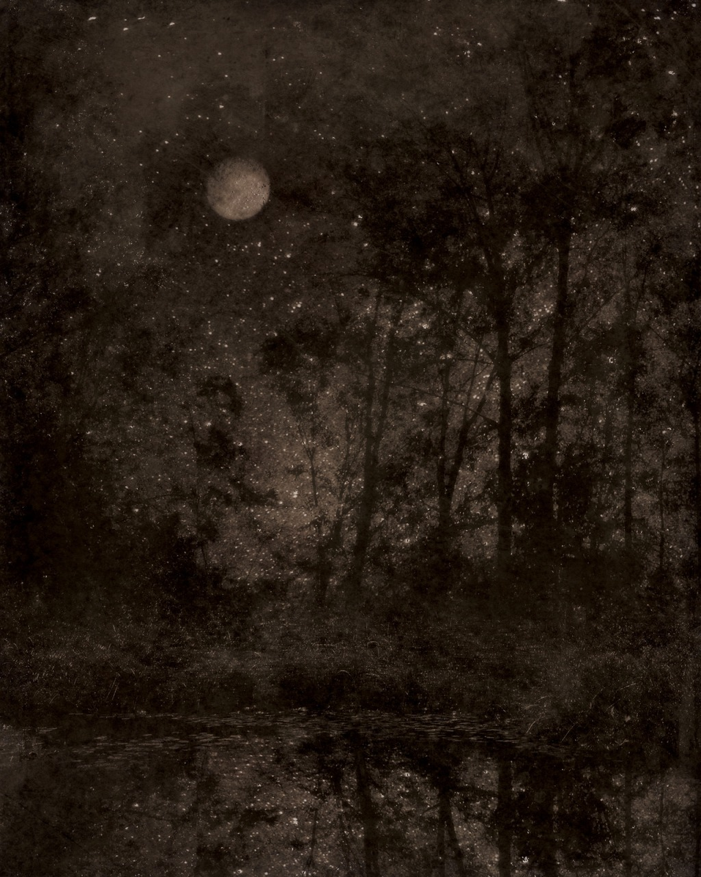 Nocturnal Landscape 108  - Digital Photograph printed on Hahnemühle Photo Rag Pearl by Ted Kincaid