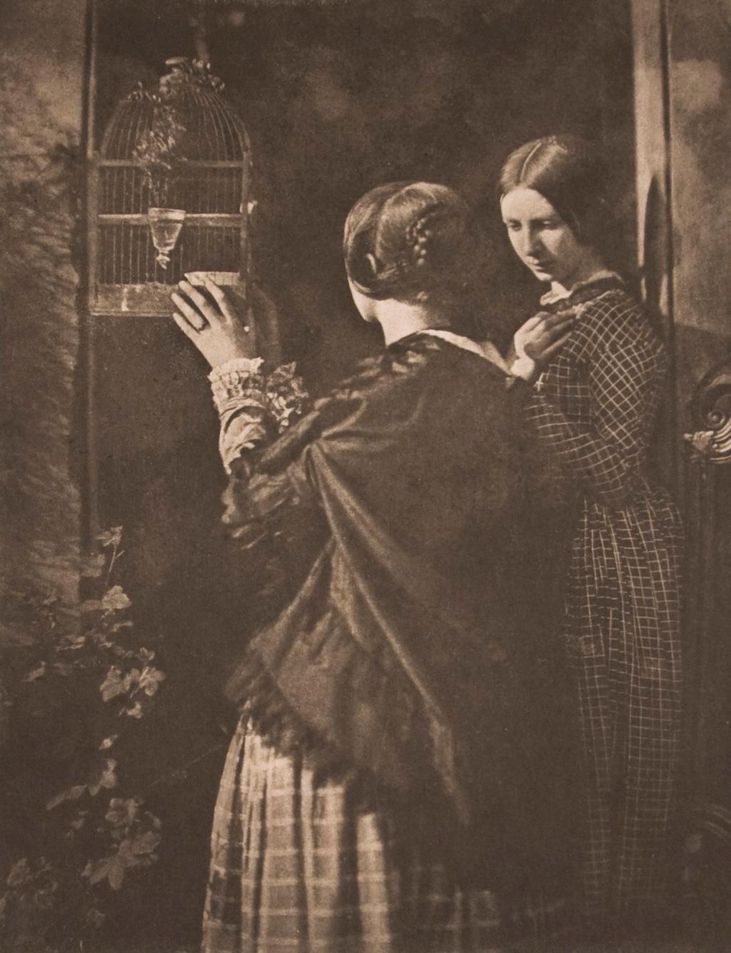 The Bird Cage - Taken 1845 by David Octavius Hill and Robert Adamson