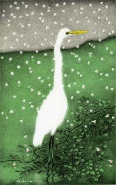 雪花 - Snowflake