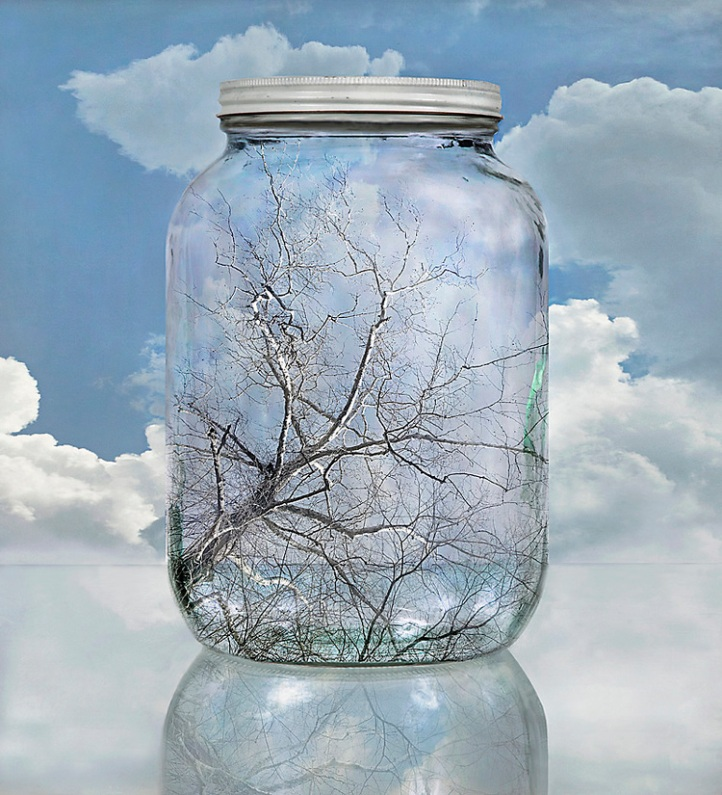 Sycamore Sky by John Grant