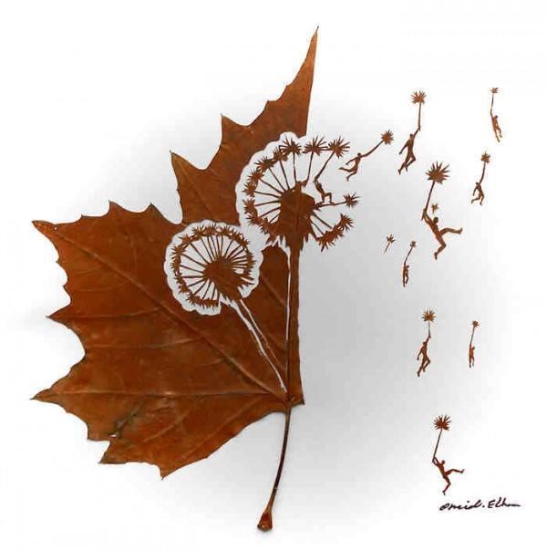 Dandelion by Omid Asadi