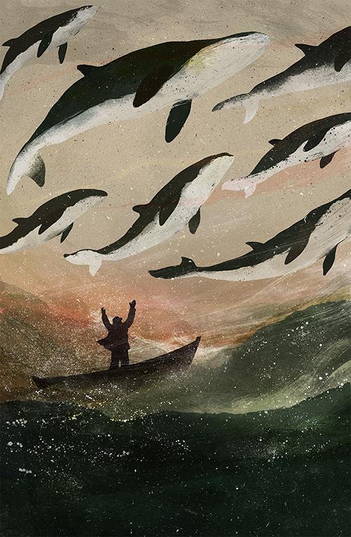 Mink Whale Migration