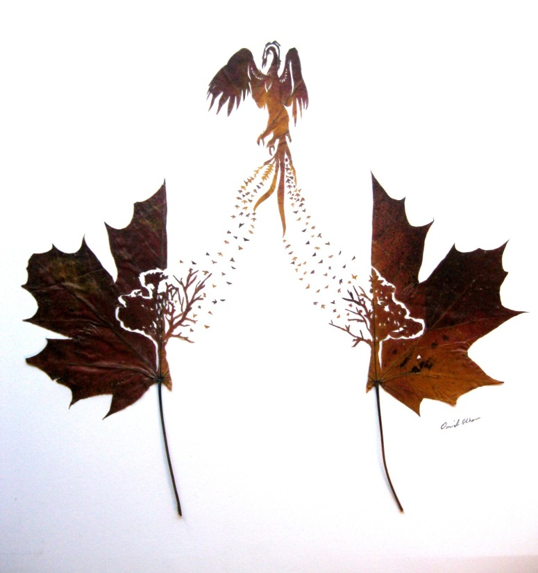 Phoenix by Omid Asadi