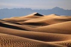 Golden Sand Desert