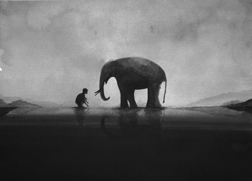 One day in the Elephant Village by Elicia Edijanto