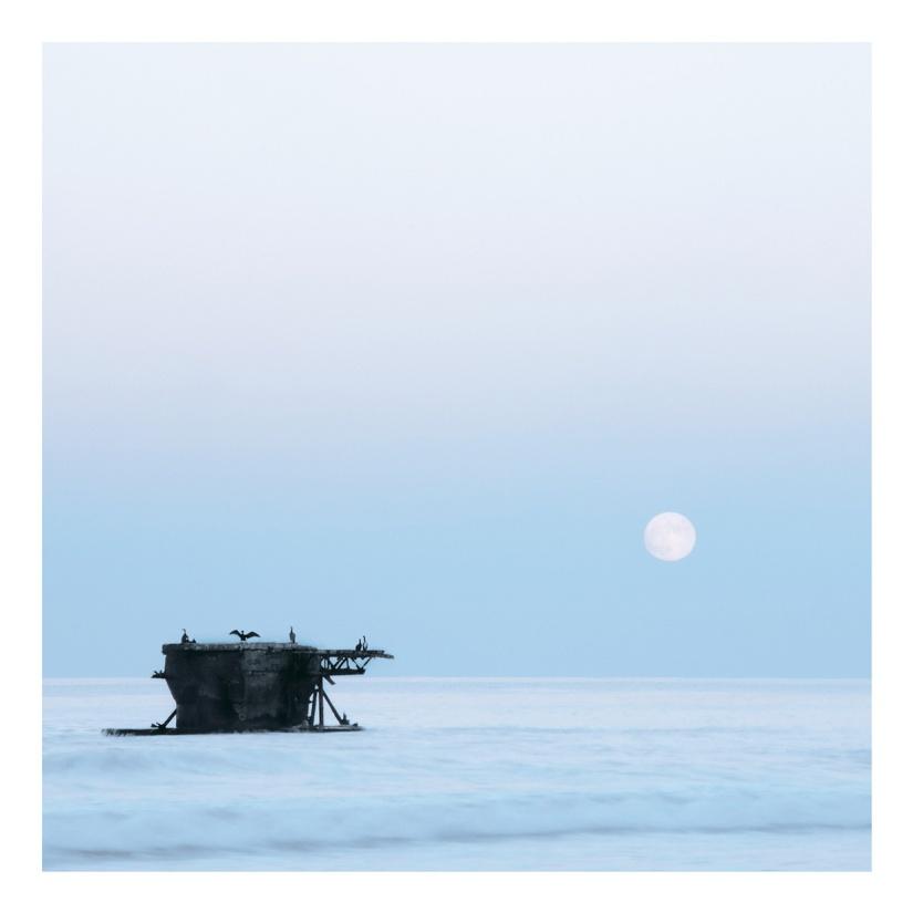 Moonlight by Mehran Naghshbandi