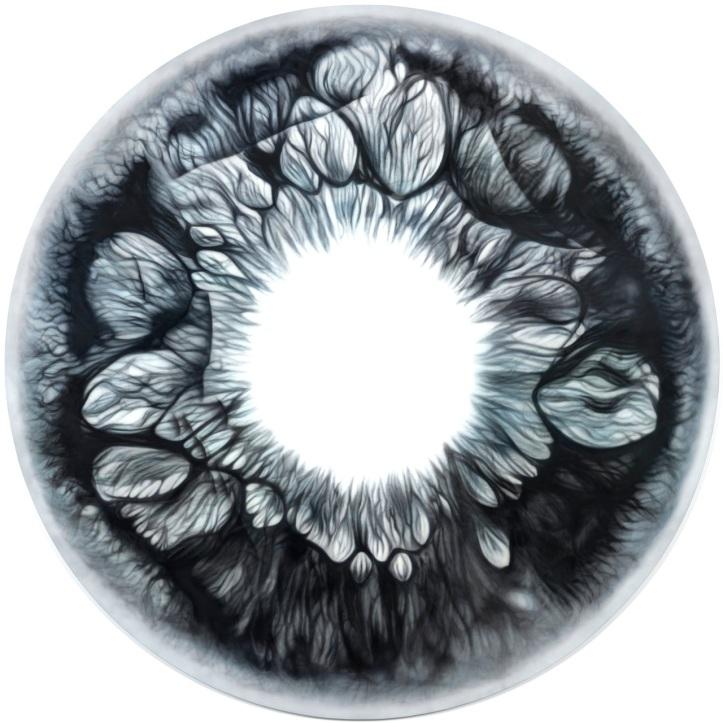X-Ray Eye - Oil on Canvas Marc Quinn